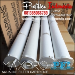 Max Pro Aqualine Filter Cartridge Indonesia  large
